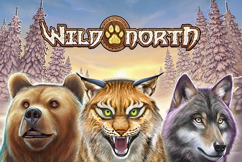 Wild North - Rizk Casino