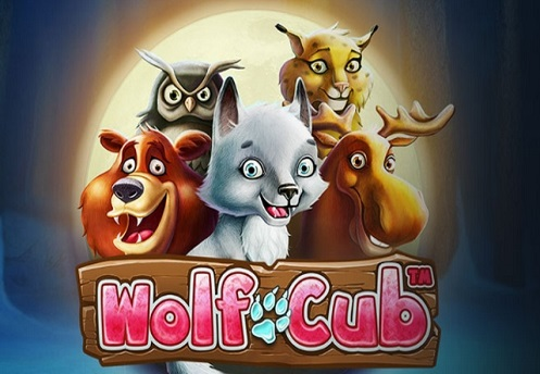 Wolf Cub - Mobil6000